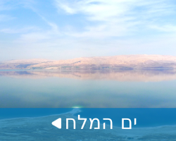Dead_sea_tour-man_go_300X200